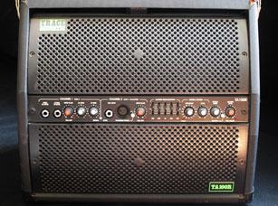 Trace Elliot TA100R Acoustic Guitar Amp